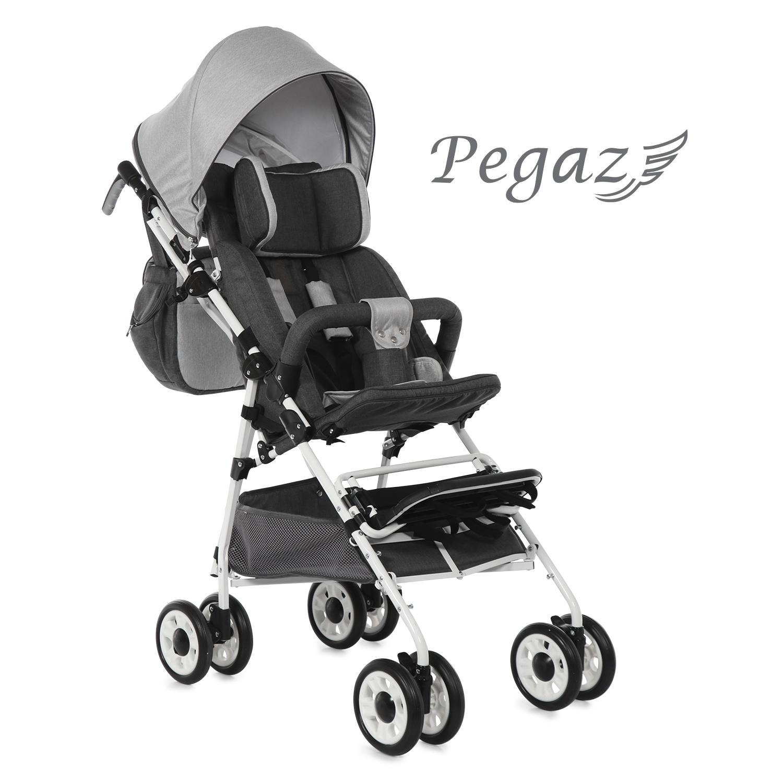 thomashilfen_rehabuggy_pegaz_produkt-670ea91b