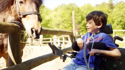 #Breas#Beatmet#Image#Freizeit_Vivo_60_Boy_with_horse_19362